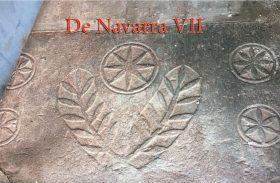 De Navarra VII- Los Navar