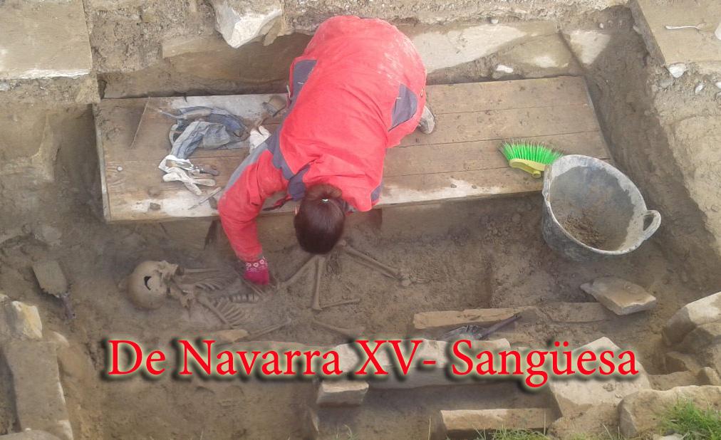 De Navarra XV- Sangüesa