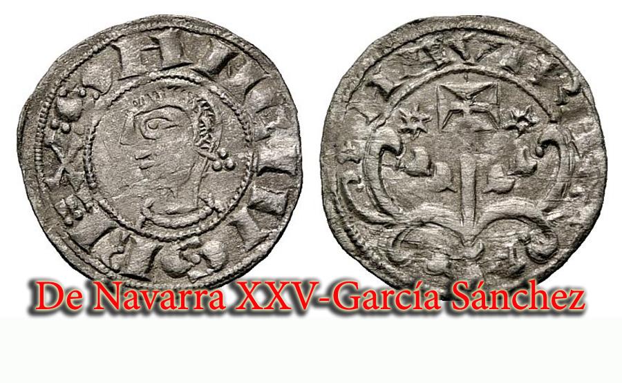 De Navarra XXV-García Sánchez I